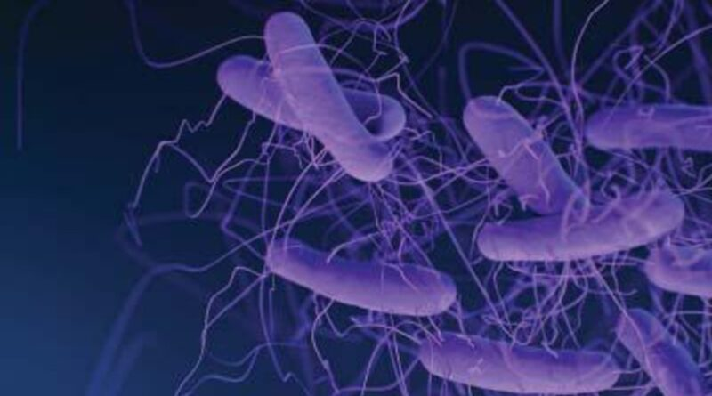 Infecţia cu Clostridioides Difficile